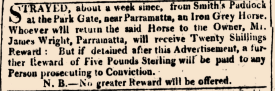 """""""Classified Advertising,"""" The Sydney Gazette and New South Wales Advertiser, Saturday 4 September 1813, p.1"""