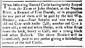 """Classified Advertising,"" The Sydney Gazette and New South Wales Advertiser, Sunday 24 September 1809, p.1"