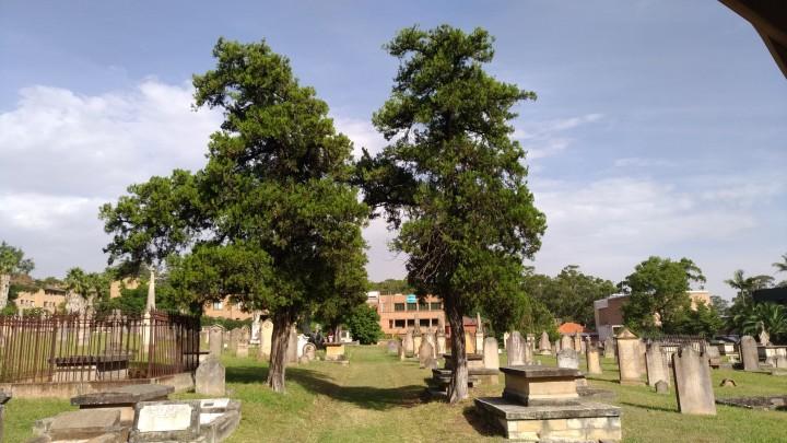 St. John's Cemetery Parramatta, St. John's Cemetery Project, The Gateway to Old Parramatta, Australian History