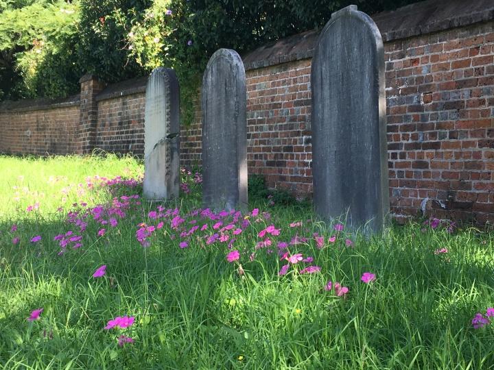 St. John's Cemetery, Parramatta (2019)