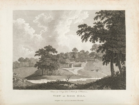 Rose Hill (Parramatta), 1792, Parramatta, St. John's Cemetery Project, Old Parramattans, First Fleet, First Fleeters, Burramattagal Country, Dayes