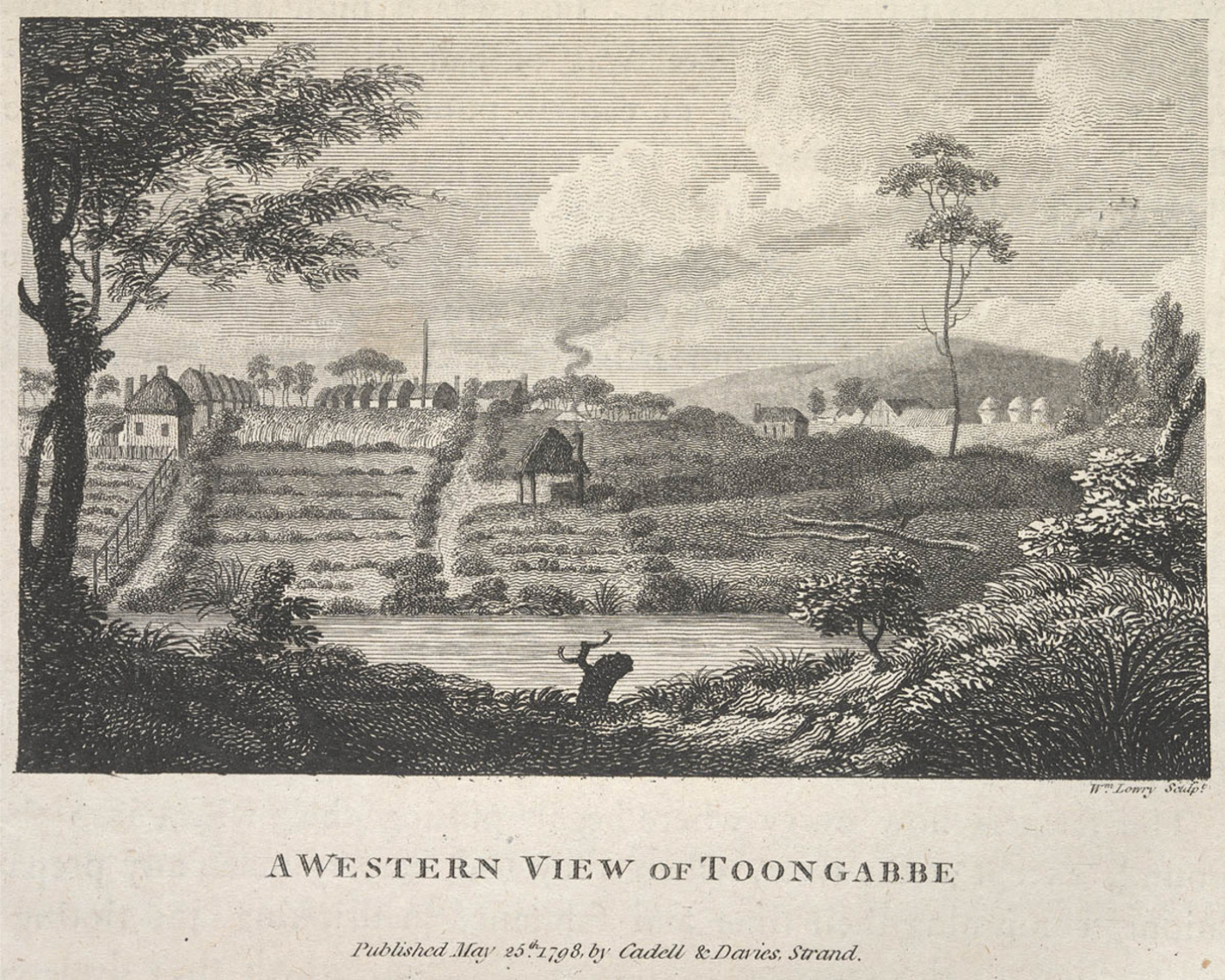 Wilson Lowry, Western View of Toongabbe, Toongabbie, St. John's Cemetery Project, Old Parramattans, St. John's First Fleeters, Convicts, Thomas Daveney