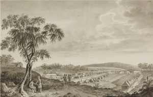 Fernando Brambila, Parramatta, April 1793, eighteenth-century Parramatta, eighteenth-century medicine, hospital, St. John's Cemetery Project, Old Parramattans, John Irving, Surgeon
