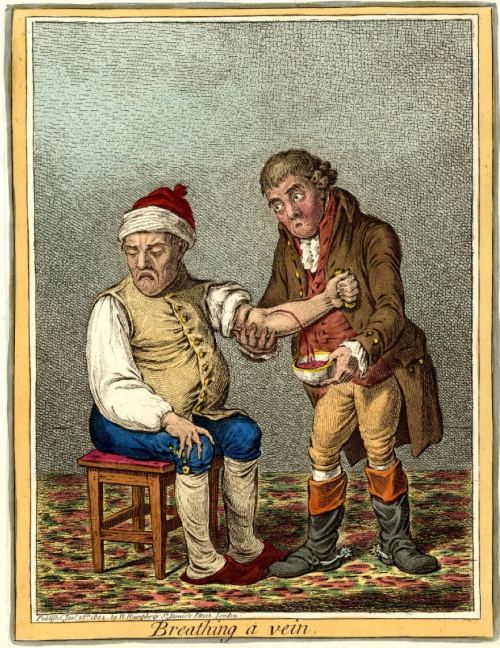 James Gillray, Bloodletting, Breathing a Vein, Eighteenth-Century Medicine, Nineteenth-Century Medicine, Medical History, Medical Treatment, St. John's Cemetery Project, Old Parramattans, John Irving